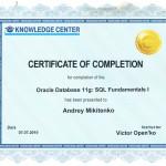 Oracle11g_1